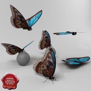 blue morpho butterfly poses obj