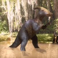 Parasaurophus