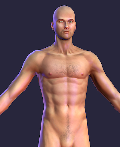 3dsmax naked human male