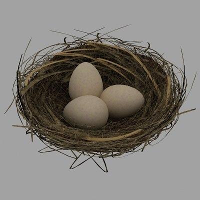 3d model of bird nest eggs