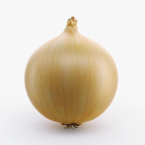 3d onion use model