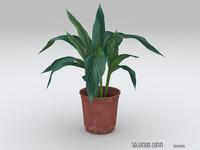 3d plant v1