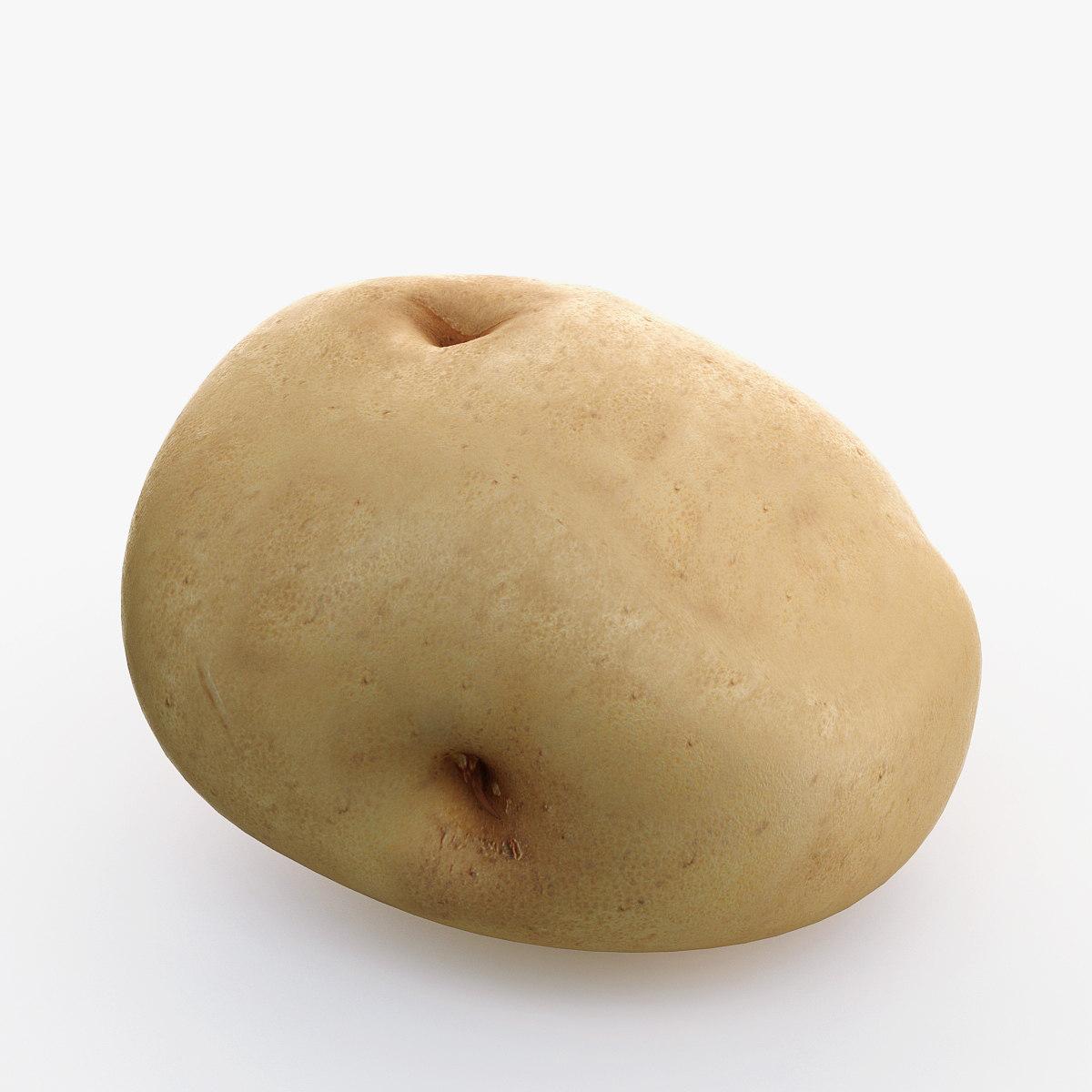 3dsmax potato use
