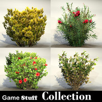 Collection_bush_05