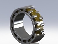 Double row cylinder bearing