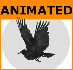 3dsmax rigged raven animations
