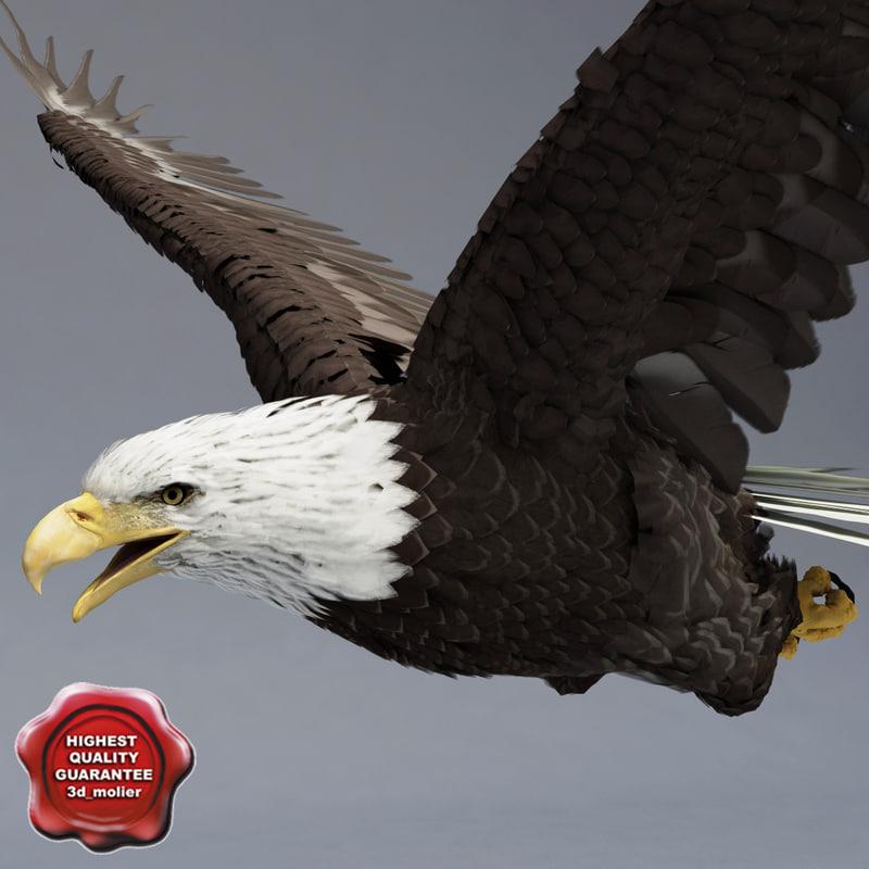3ds max bald eagle pose 3