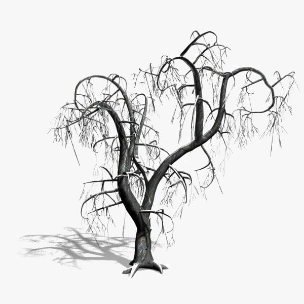 max scanline winter deciduous tree