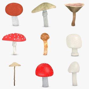 poisonous mushrooms 3d model