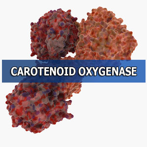 carotenoid oxygenase max