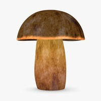 3ds max mushroom boletus erythropus