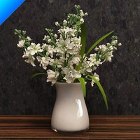 stock flower in vase