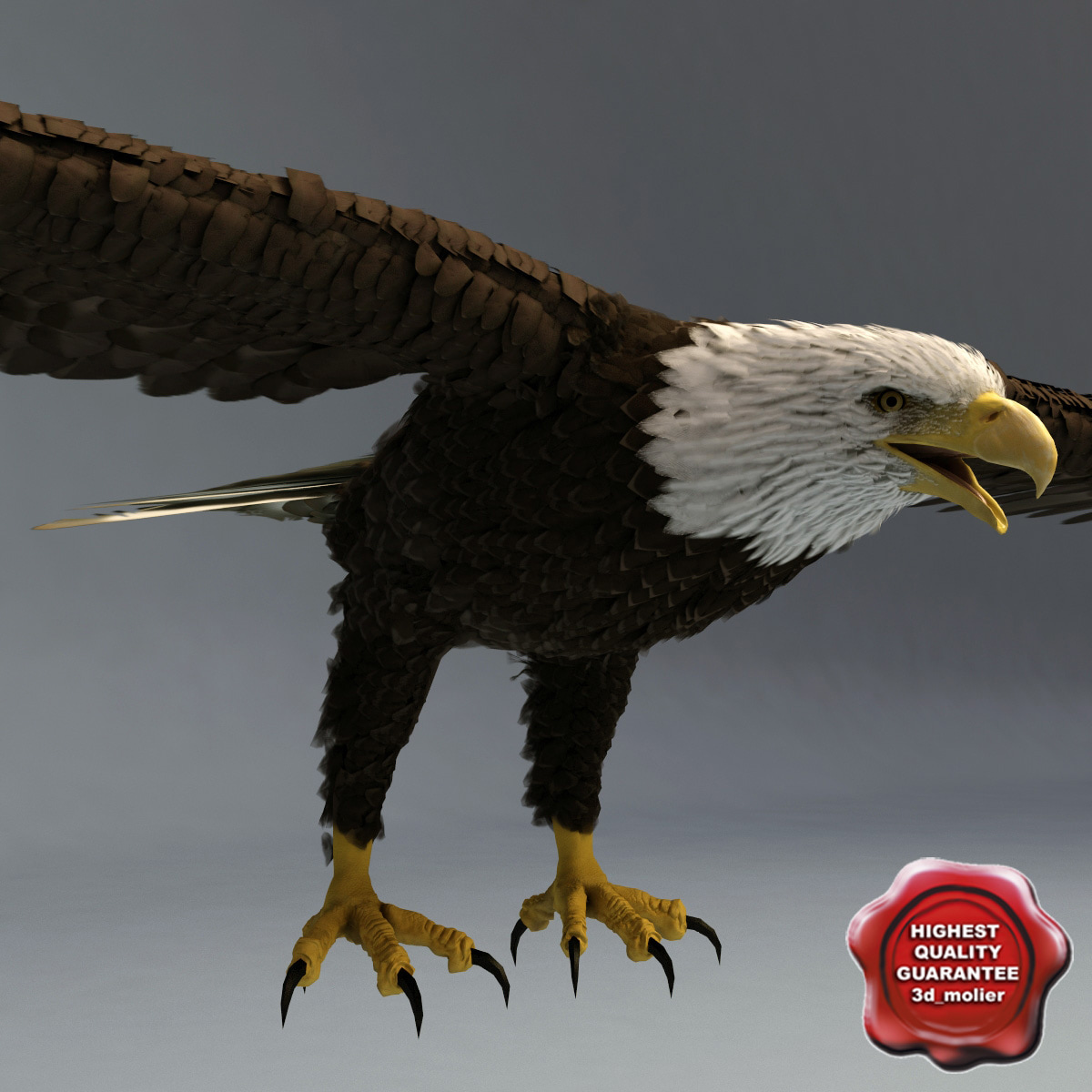 bald eagle render by - photo #5