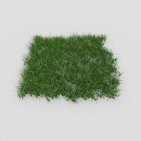grass realistic plant 3d model