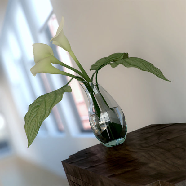 3dsmax elegance cala lily vase