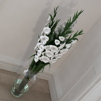 Gladiolus bouquet in vase