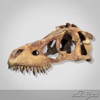 dino skull 3d max