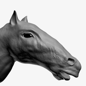 hd horse head 3d max