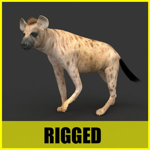 3d hyena rigged animation