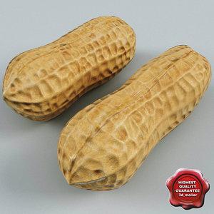 3d peanuts modelled
