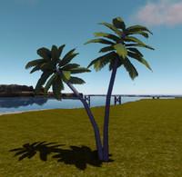 3d twin palmtree