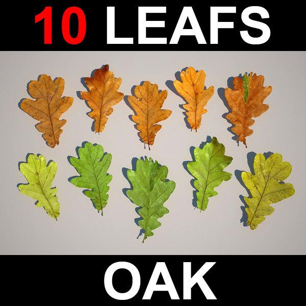3d oak leafs