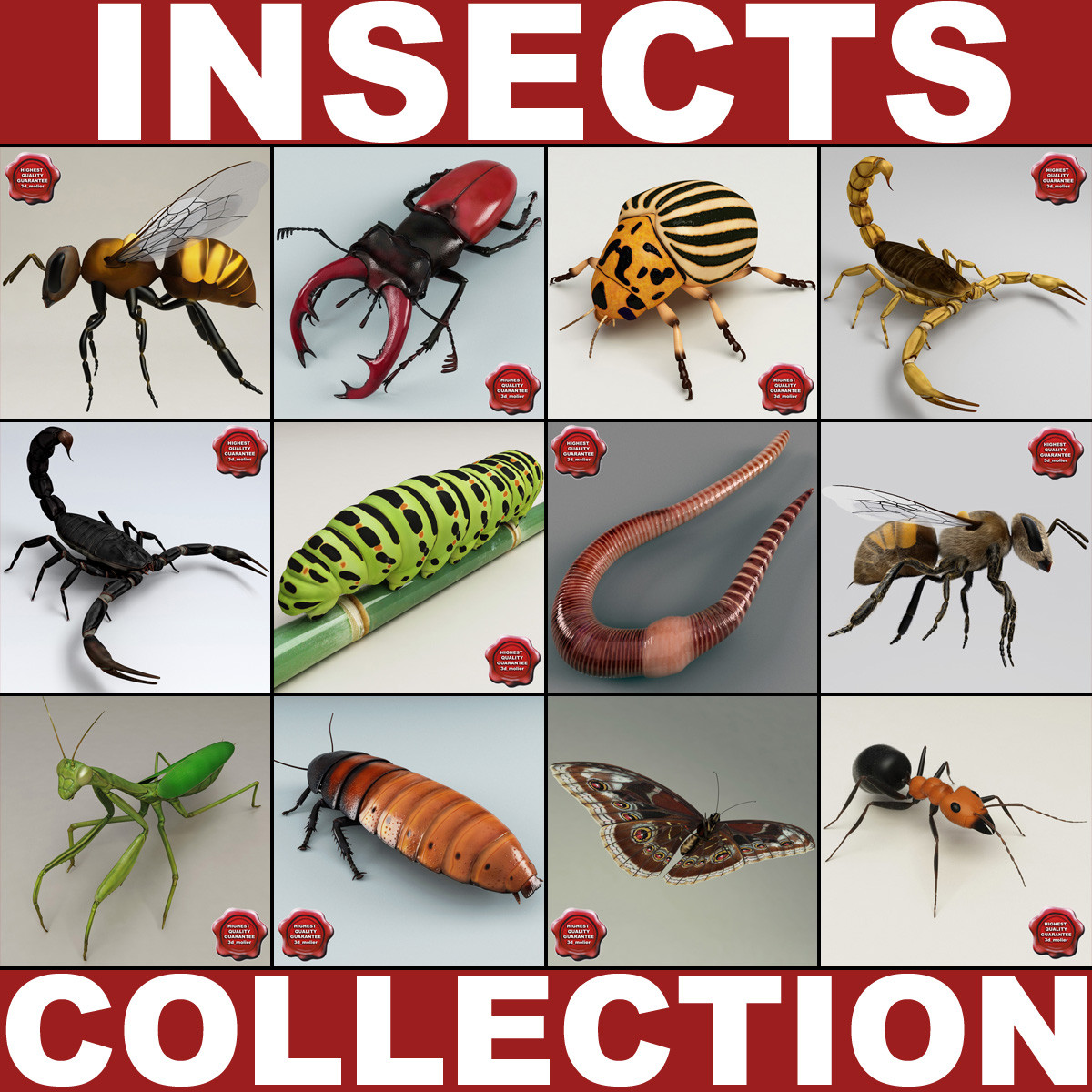 insects v4 max