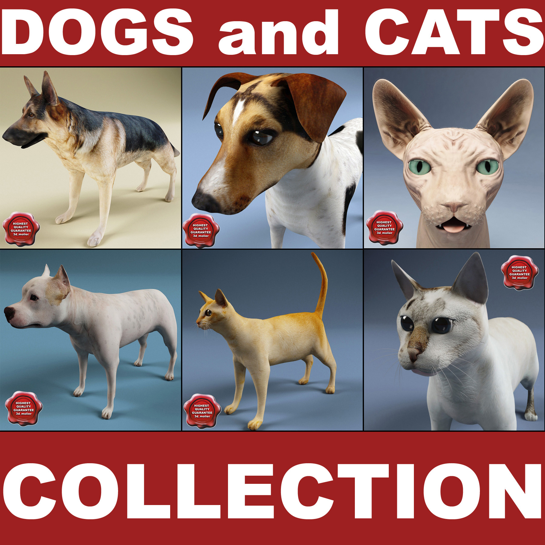 dogs cats 3d model