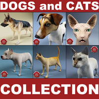 Dogs and Cats Collection