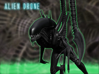 3d model rigged xenomorph drone aliens