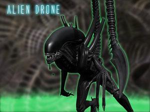 3d rigged xenomorph drone aliens model