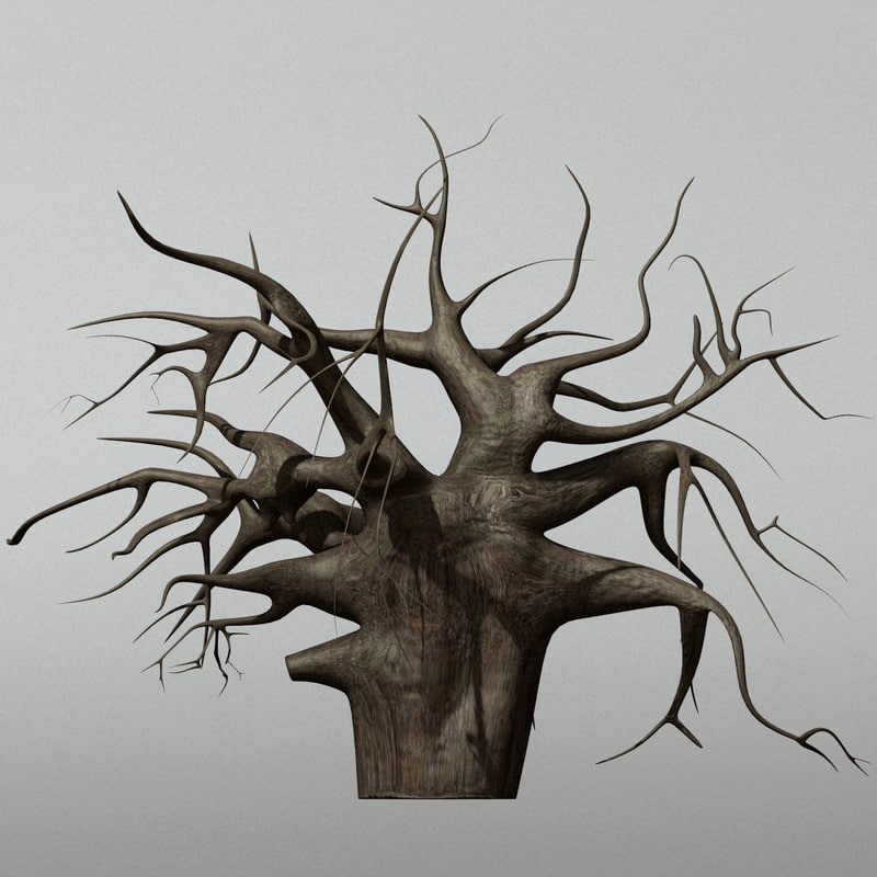 african baobab tree 3d 3ds