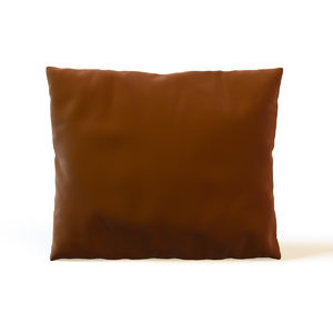 pillow cushion max