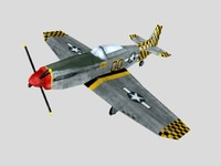 P51 Mustang Fighter