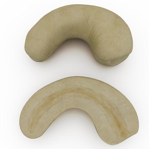 cashew modelled 3d obj
