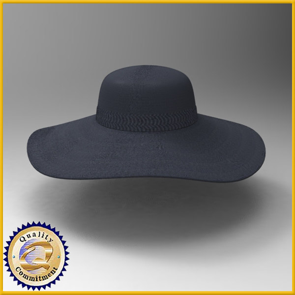 3d model hat ladies floppy