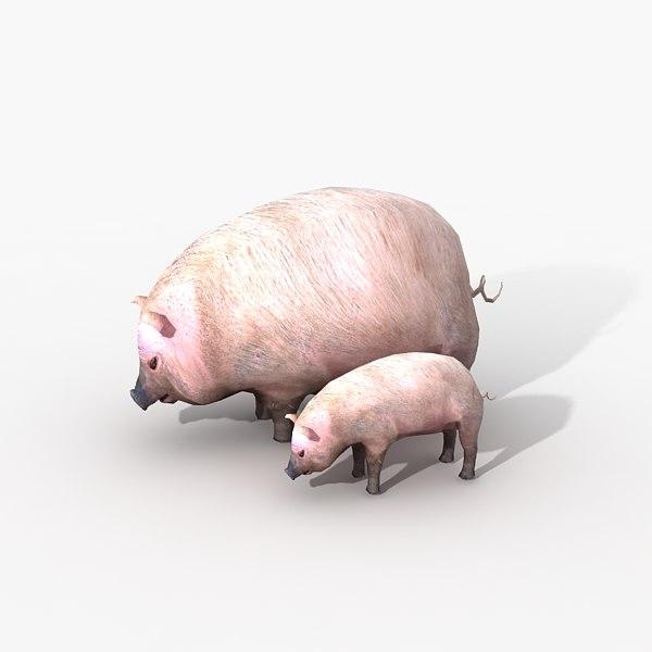 pig piglet 3d model