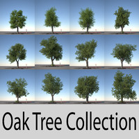 oak trees 3d obj
