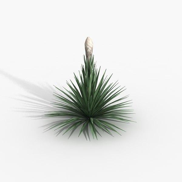 puya cactus 3d max
