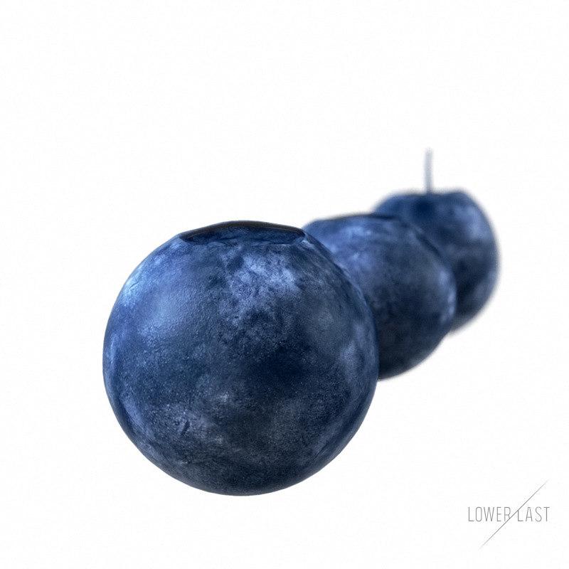 3d model blueberries blue