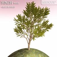 3d model tree high-poly billboard