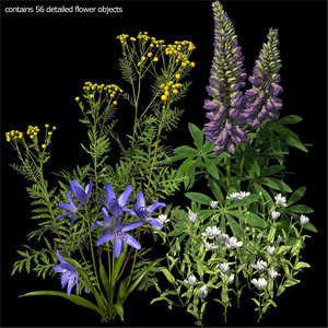3d model wildflowers vol 1