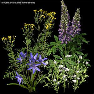 3d model wildflowers vol 1
