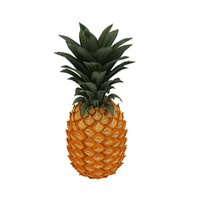 3d pineapple ananas tropical model