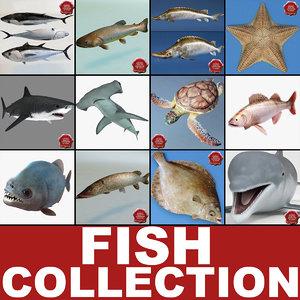 fishs v5 max