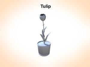 3d tulip plant flowers