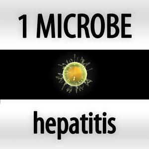 microbes micro organisms 3d model