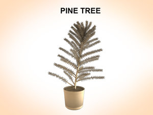 pines trees 3ds