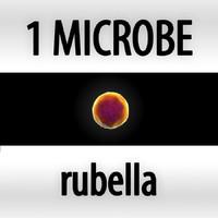 obj microbes micro organisms