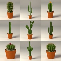 cactus+pots c4d